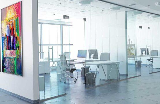 Stylish glass office partitons